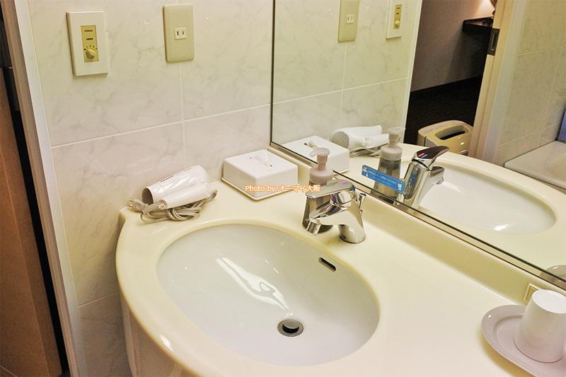 バスルームに電気コンセントが2つあります。